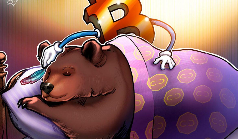 بلاک چین : بازار های خرس انجام چیزهای خرس، اما بیت کوین دارای توانایی غول پیکر است