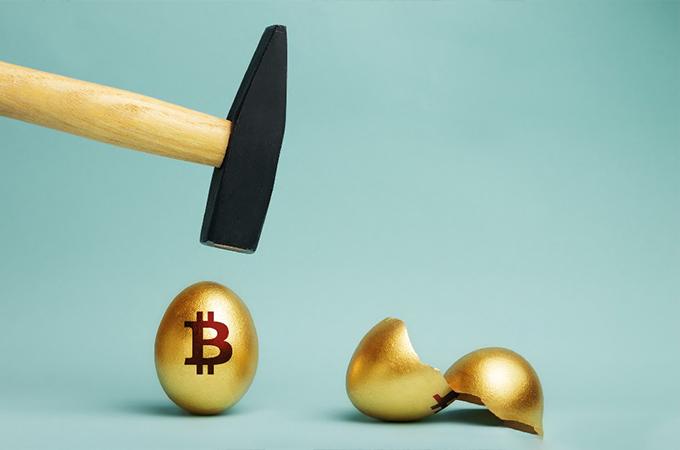 مایک نووگراتز: بیت کوین و طلا شبیه هم هستند