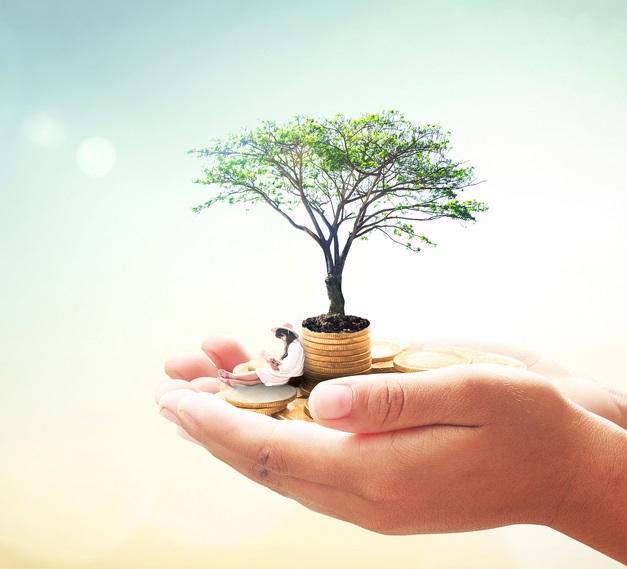 سرمایه گذاری رشد (Growth Investing) چیست؟