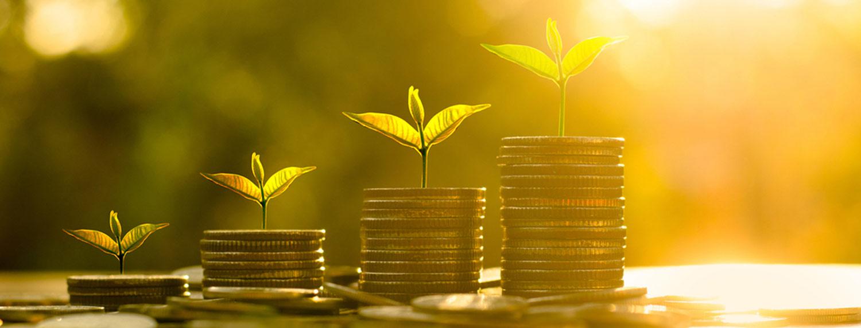 سرمایهگذاری رشد (Growth Investing) چیست؟